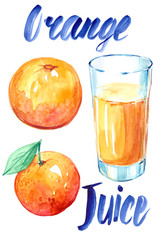 Orange juice. Watercolor illustration