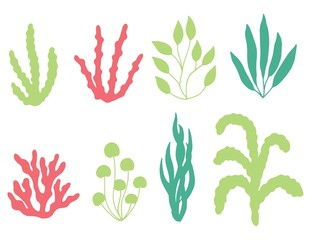 colored corals and seaweed vector silhouette. isolated on white background