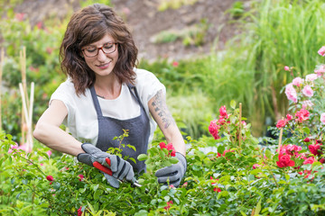 Gärtnerin schneidet Rosenpflanzen im Gartencenter