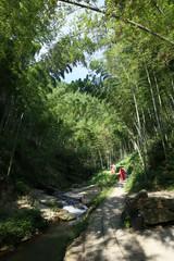 China mountain stream falls