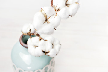 Cotton branch in a turquoise vase on white background. Delicate white cotton flowers. Light cotton background, flat lay.
