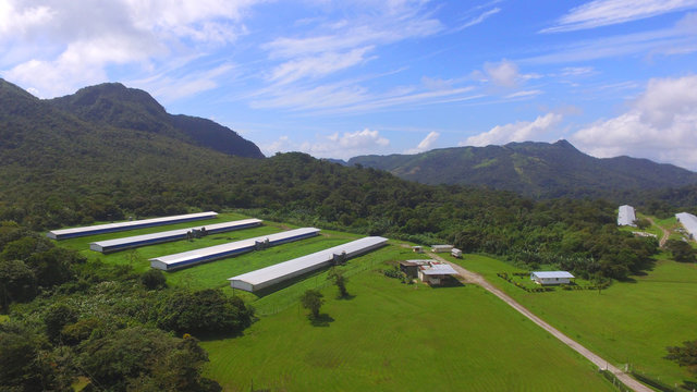 Aerial view of poultry houses in the mountains of central Panama