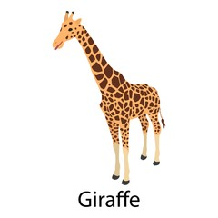 Giraffe icon. Isometric of giraffe vector icon for web design isolated on white background