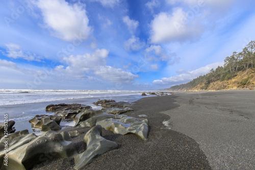 Rocks Worn Smooth By Erosion on Washington Beach