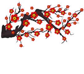 Foto op Aluminium Vogels in kooien Vector Cherry blossom for Chinese New Year and mid autumn festival