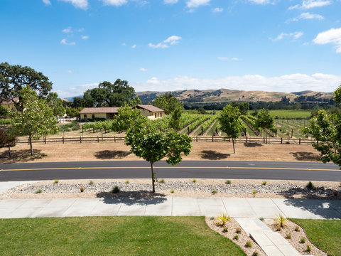 Panorama of front yard, sidewalk, road, winery and vineyard on a sunny spring day in the suburb or exurb South Livermore, Livermore Wine Country, California