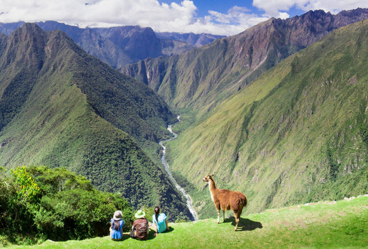 Llama and people on Inca Trail