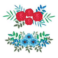 beautiful roses and leafs decoration vector illustration design