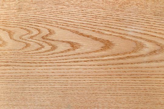 Texture of veneer of American oak.