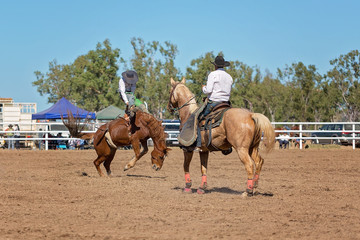 Bucking Bronco Horse At Country Rodeo