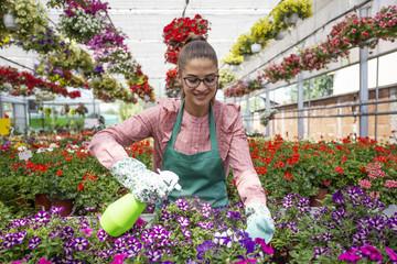 Refreshing flowers by sprinkler full of water in garden