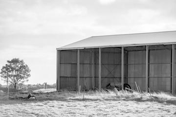 Farming shed