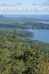 Wall Mural - View in Koli National Park in Finland in summertime.