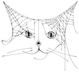 Spider web shape silhouette cat head symbol halloween