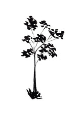 Hand drawn sketch illustration of tree silhouette isolated on white