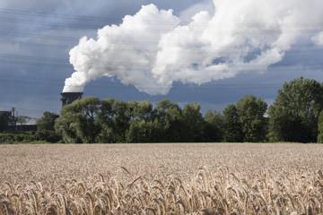 Bottrop-Landwirtschaft in der Welheimer Mark vor Industriekulisse