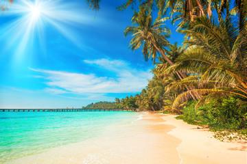 tropical beach.  sea and coconut palm.  Landscape of paradise tropical island beach