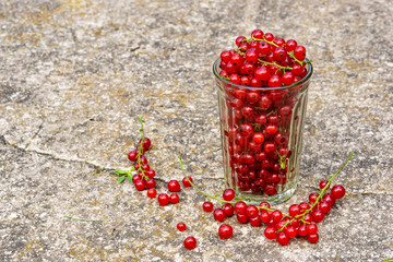 Glass with red currant on the concrete floor