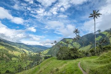Cocora Valley in Kolumbien