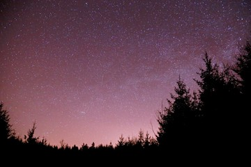 Dark night starry sky with blue milky way, pink, blue, mauve, magenta colors, silhouettes of trees on black horizon