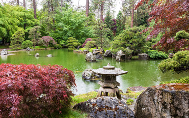 Japanese garden view of pond and lantern