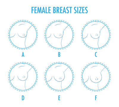 Set of contour round icons of different female breast size, body