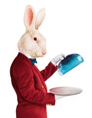 homme tête de lapin-illustration-photo-3D-animal-chef-maître d'hôtel