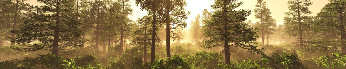 Panorama of a forest in the fog at sunset. Trees in the fog. Light above the left. 3D rendering
