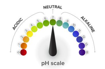Misurazione della scala pH , manometro, infografica. Tutti i passaggi da acido a neutrale ad alcalino. Il pH è una scala di misura dell'acidità o della basicità di una soluzione acquosa