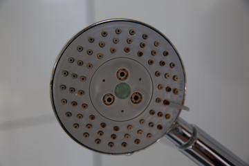 Calcified shower head with lime and mold needs cleaning. old shower head fitting in the bathroom