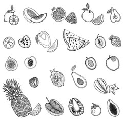 Set of hand drawn sketch style exotic fruits isolated on white background. Vector illustration.