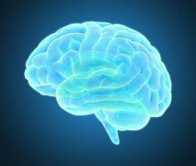 Brain scan illustration isolated on dark gray BG