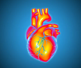 Multi color human heart illustration glowing on blue BG