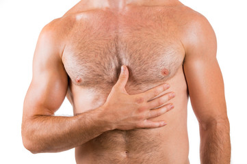 Muscular hairy male chest isolated on white background.