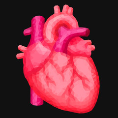 Red human heart in low poly