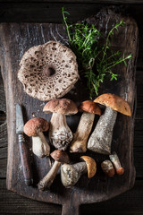 Mix of wild mushrooms and herbs on the old board