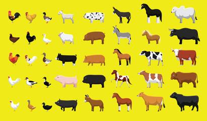 Various Farm Animals Side View Cartoon Vector Illustration Set Wall mural