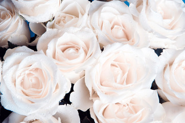 bunch of romantic flowers white roses like beautiful background