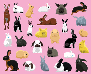 Various Domestic Rabbit Breeds Cartoon Vector Illustration