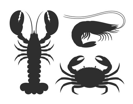 Seafood silhouette. Isolated seafood on white background