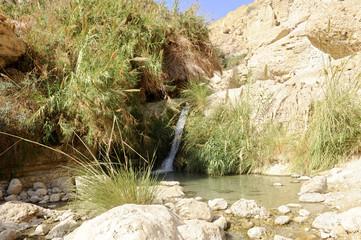 Wasserfall im Wadi David in der Nature Reserve En Gedi, Judäa, Totes Meer, Israel, Naher Osten, Vorderasien