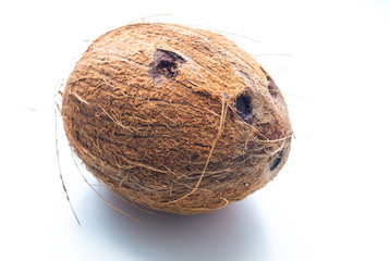 coconut on white background close-up