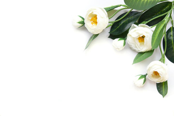 White artificial flowers on a white background.