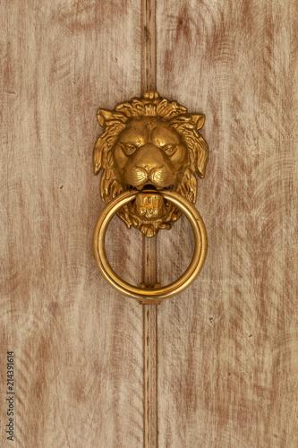 Brass Lion Head Door Knocker On A Paneled Light Wood Door