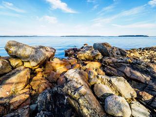 Rocky Sidney shore
