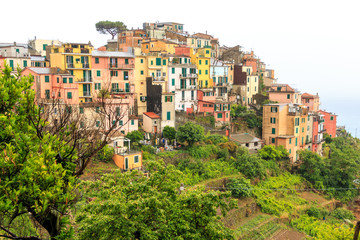View of Corniglia, Cinque Terre, Italy