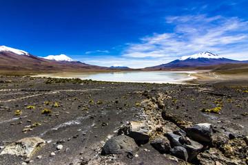 Charcota Lagoon at Bolivian Altiplano in the way to Uyuni Saltflats, Bolivia