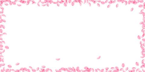 Sakura petals falling down. Romantic pink silky medium flowers. Thick flying cherry petals.