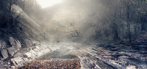 Излучина горной реки Джанет в районе курортного города Геленджик, Краснодарский край, Россия