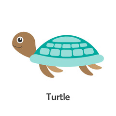 Turtle in cartoon style, marine card with ocean animal for kid, preschool activity for children, vector illustration